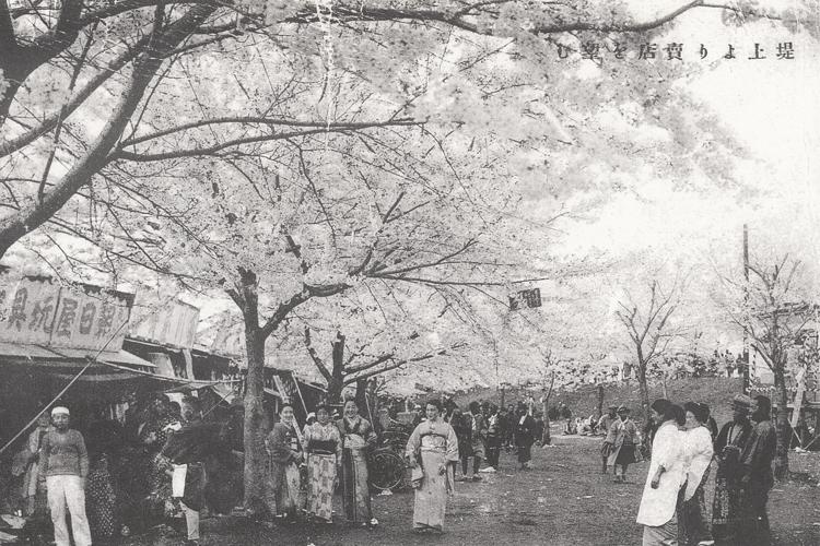 昔の桜まつりの様子